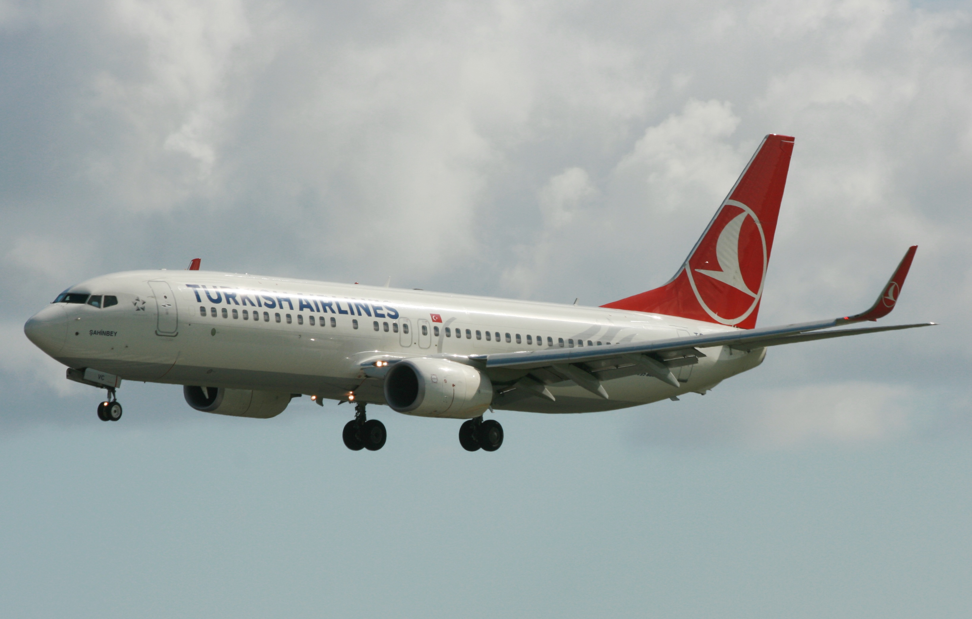 Turkish B737 TC-JYC (IMG2152 JL)